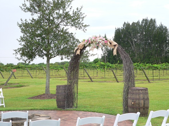 GRAPE VINE AND WEDDING ARCH