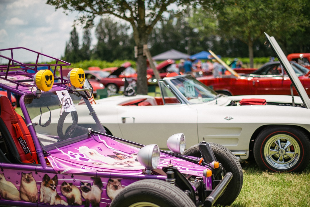 SPRING CRUISE IN CAR SHOW  Music by the DOO WOP GUYS BAND